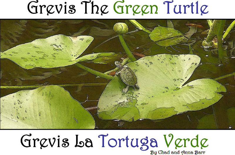 Grevis the Green Turtle: Grevis la Tortuga Verde