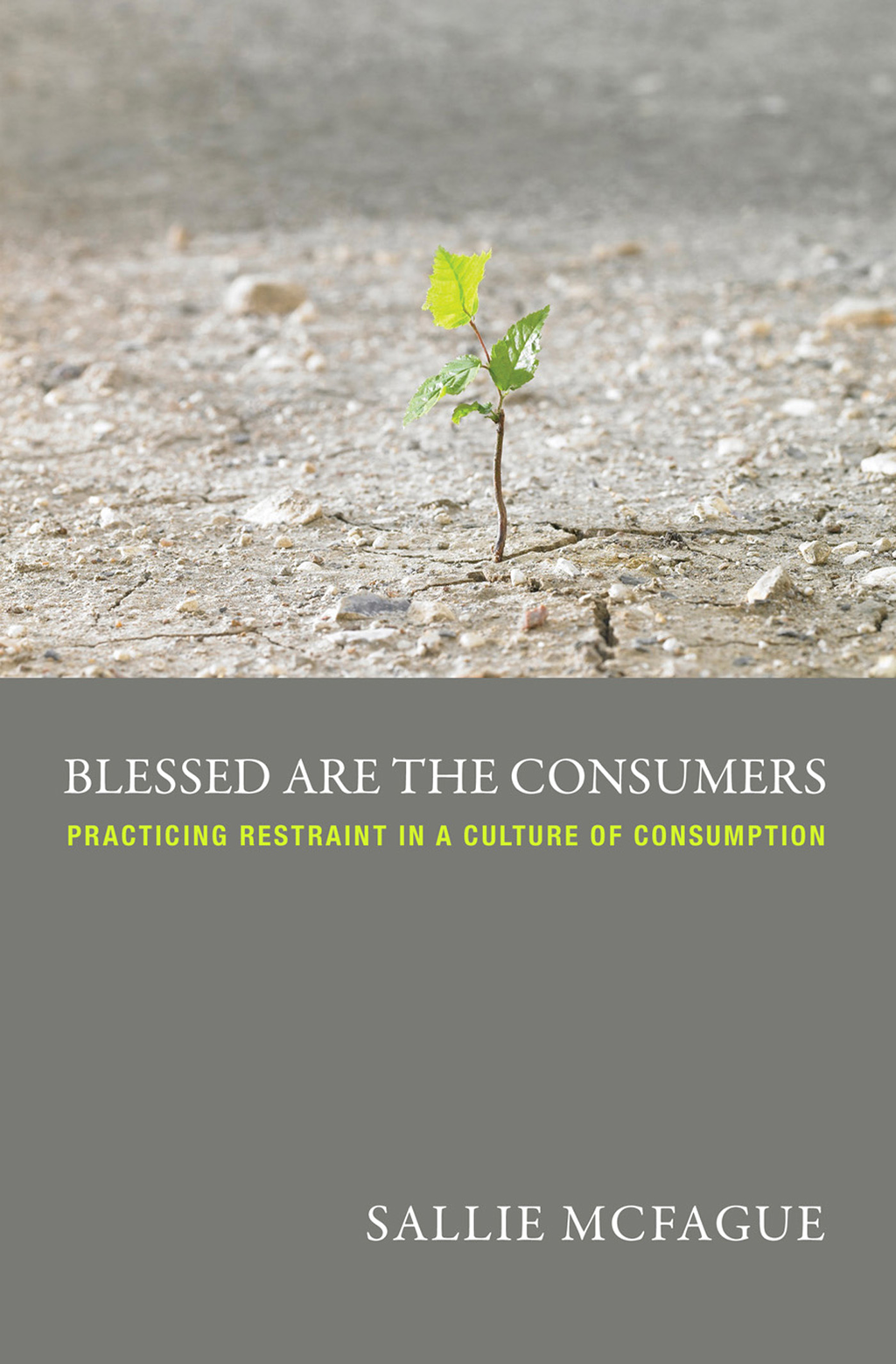 Blessed are the Consumers -- A Fortress Digital Review