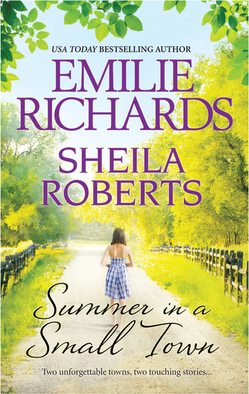 Summer in a Small Town: Welcome to Icicle Falls\Treasure Beach By: Emilie Richards,Sheila Roberts