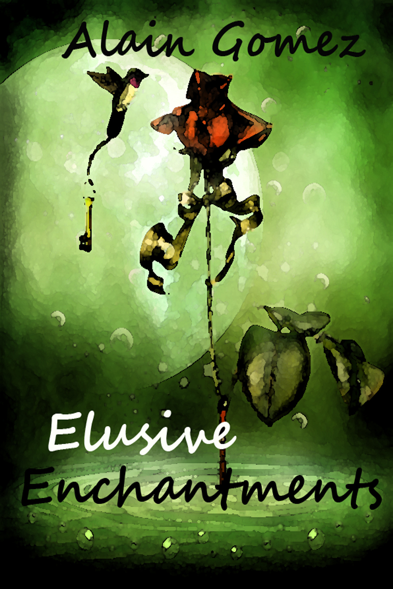 Elusive Enchantments (3 complete short stories)