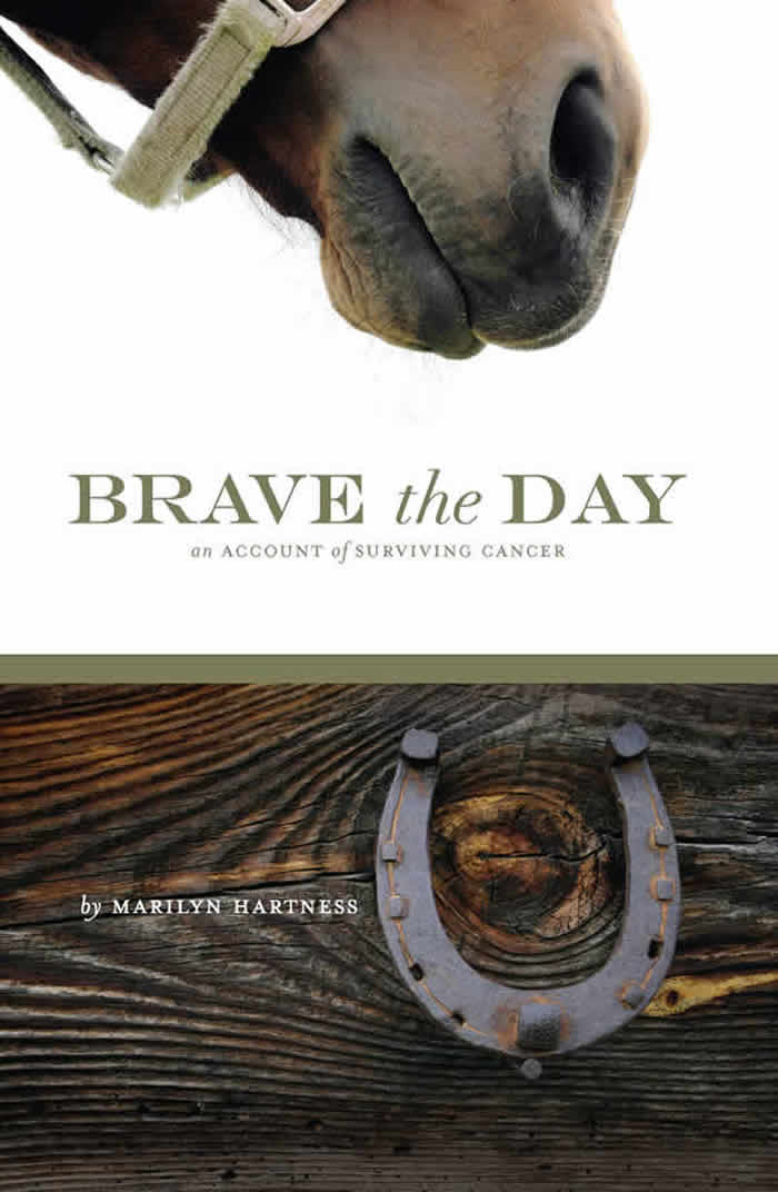 Brave The Day By: Marilyn Hartness