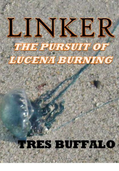Linker: The Pursuit of Lucena Burning