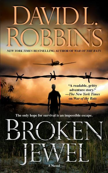 Broken Jewel By: David L Robbins