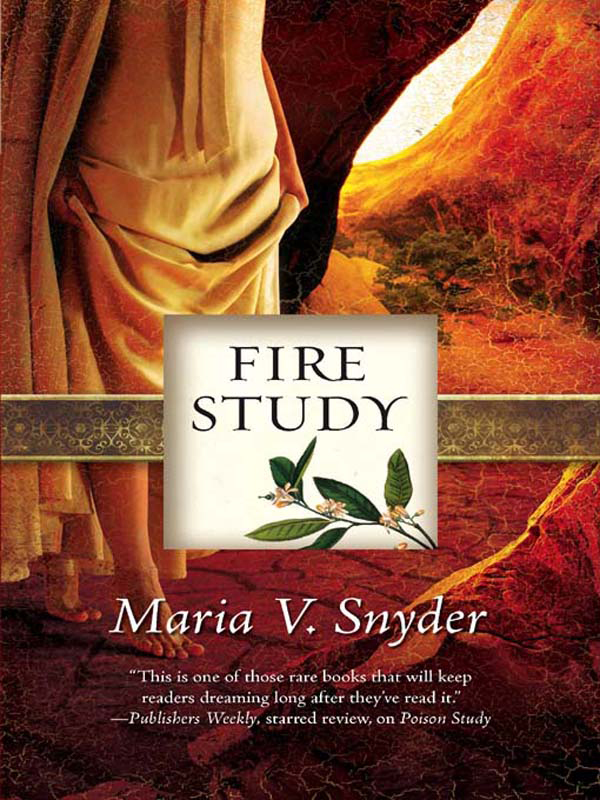 Fire Study By: Maria V. Snyder