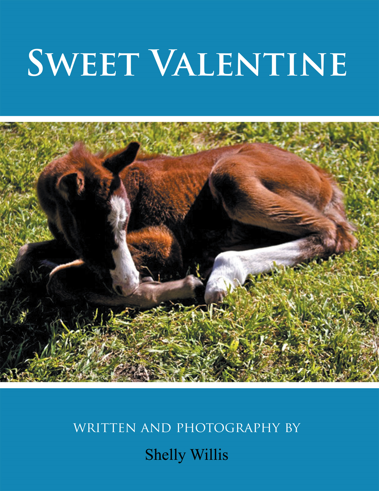 Sweet Valentine By: Shelly Willis