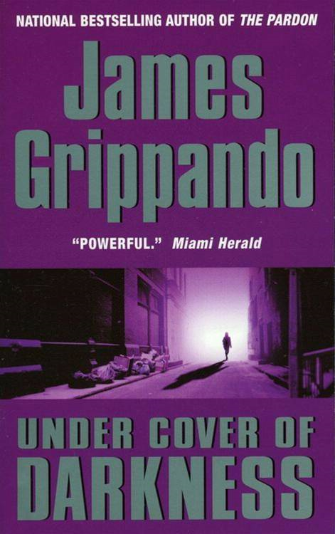 Under Cover of Darkness By: James Grippando