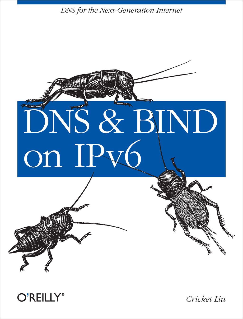 DNS and BIND on IPv6 By: Cricket Liu