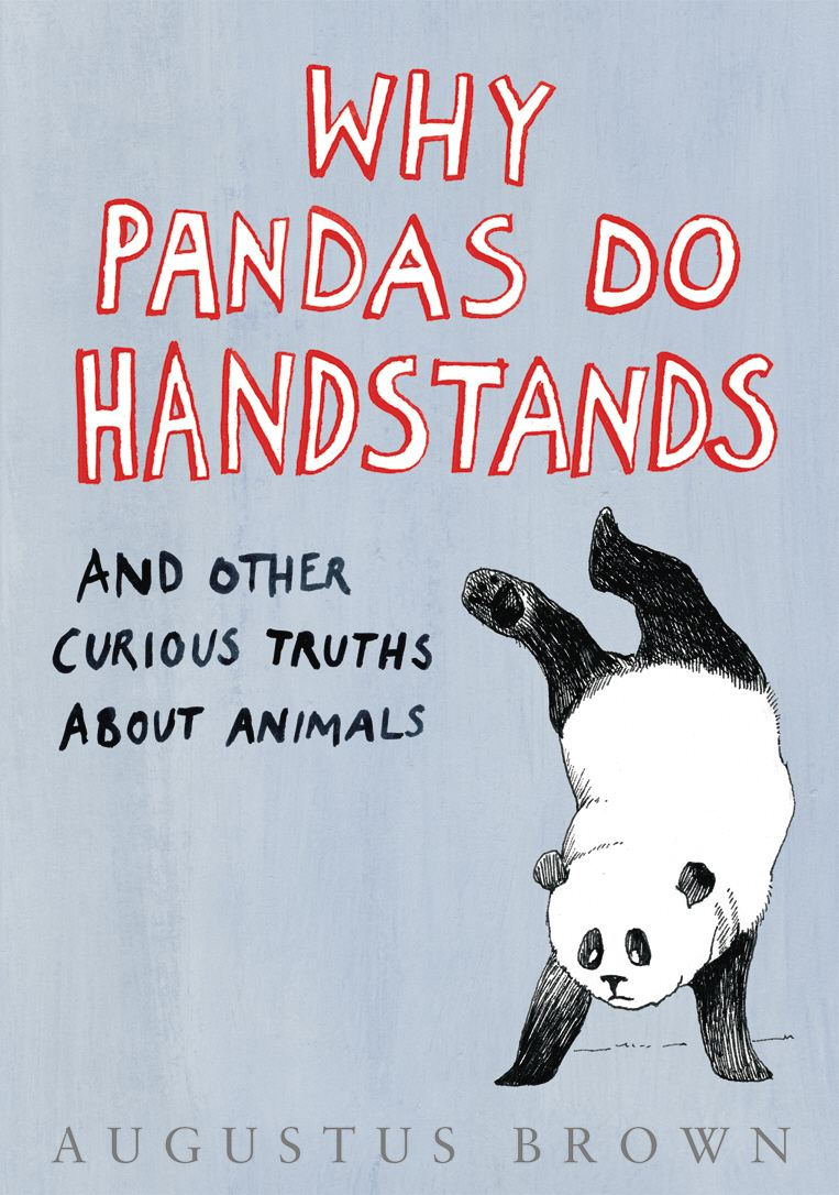 Why Pandas Do Handstands... And Other Curious Truths About Animals