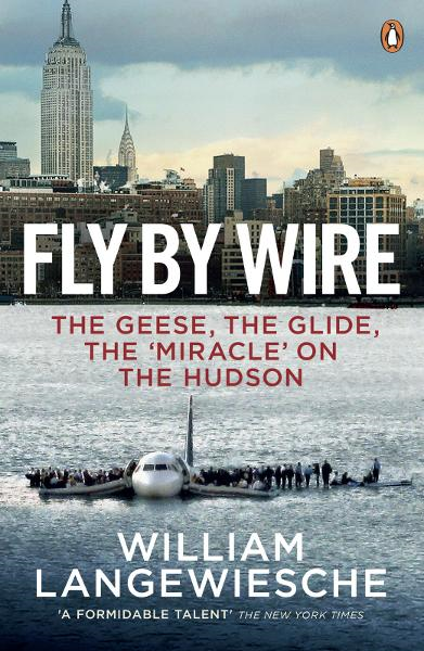Fly By Wire The Geese,  The Glide,  The 'Miracle' on the Hudson