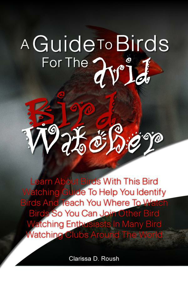 A Guide To Birds For The Avid Bird Watcher