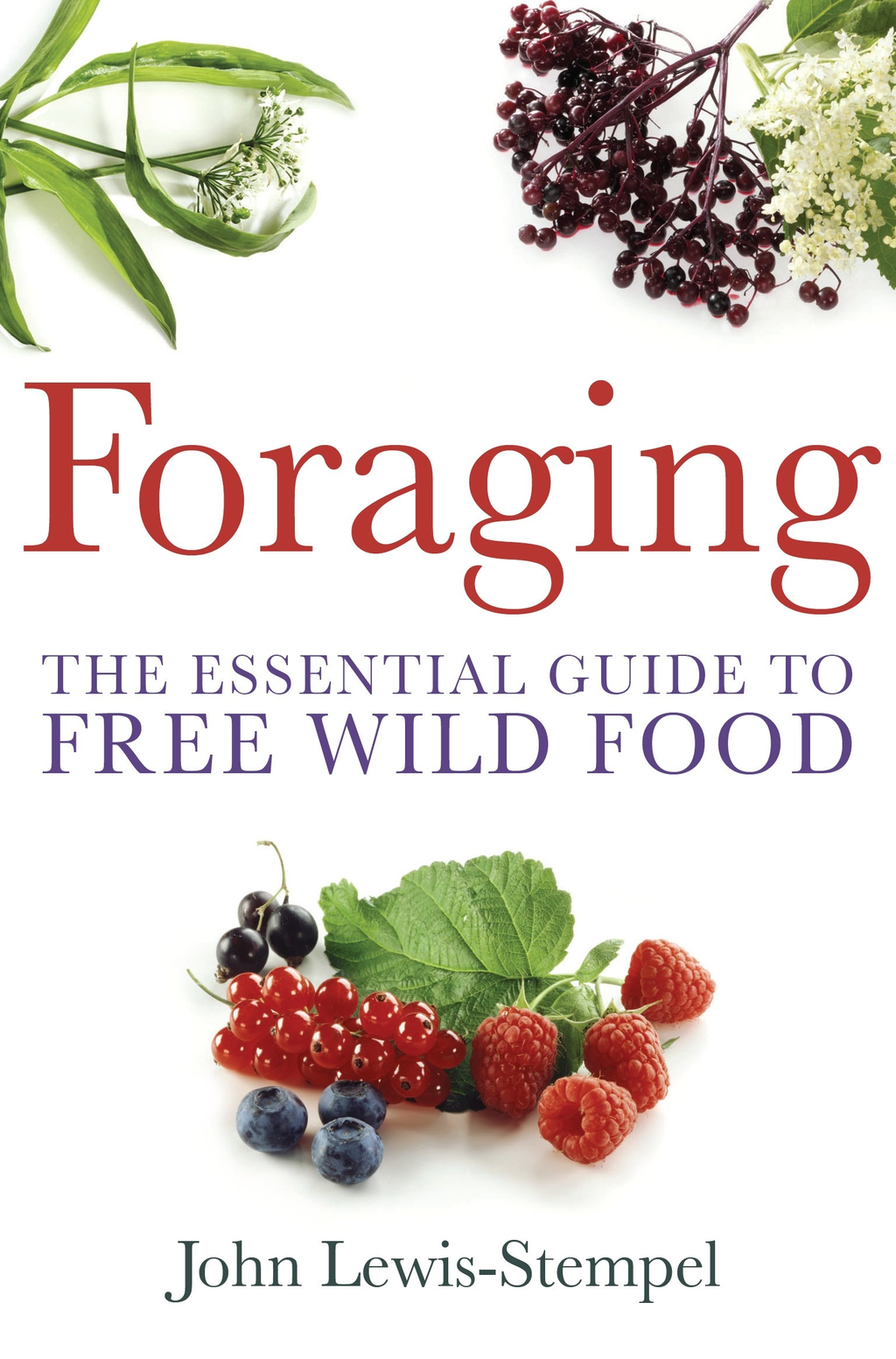 Foraging The Essential Guide to Free Wild Food
