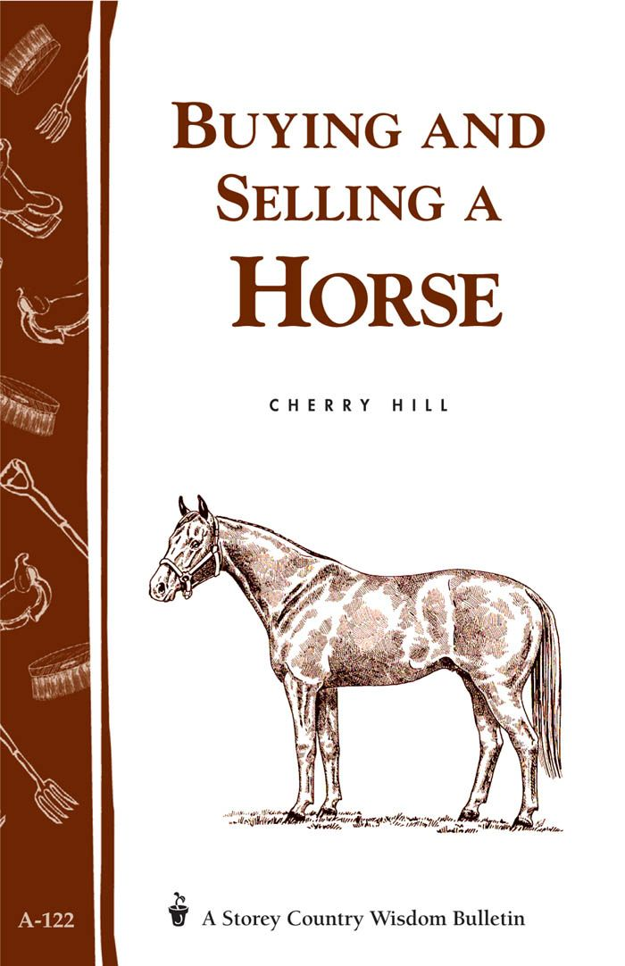 Buying and Selling a Horse