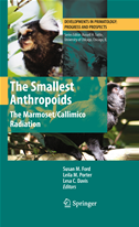 The Smallest Anthropoids