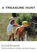 download A Treasure Hunt book