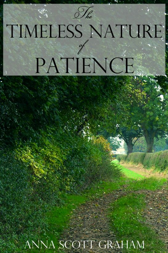 Alvin's Farm Book 6: The Timeless Nature of Patience