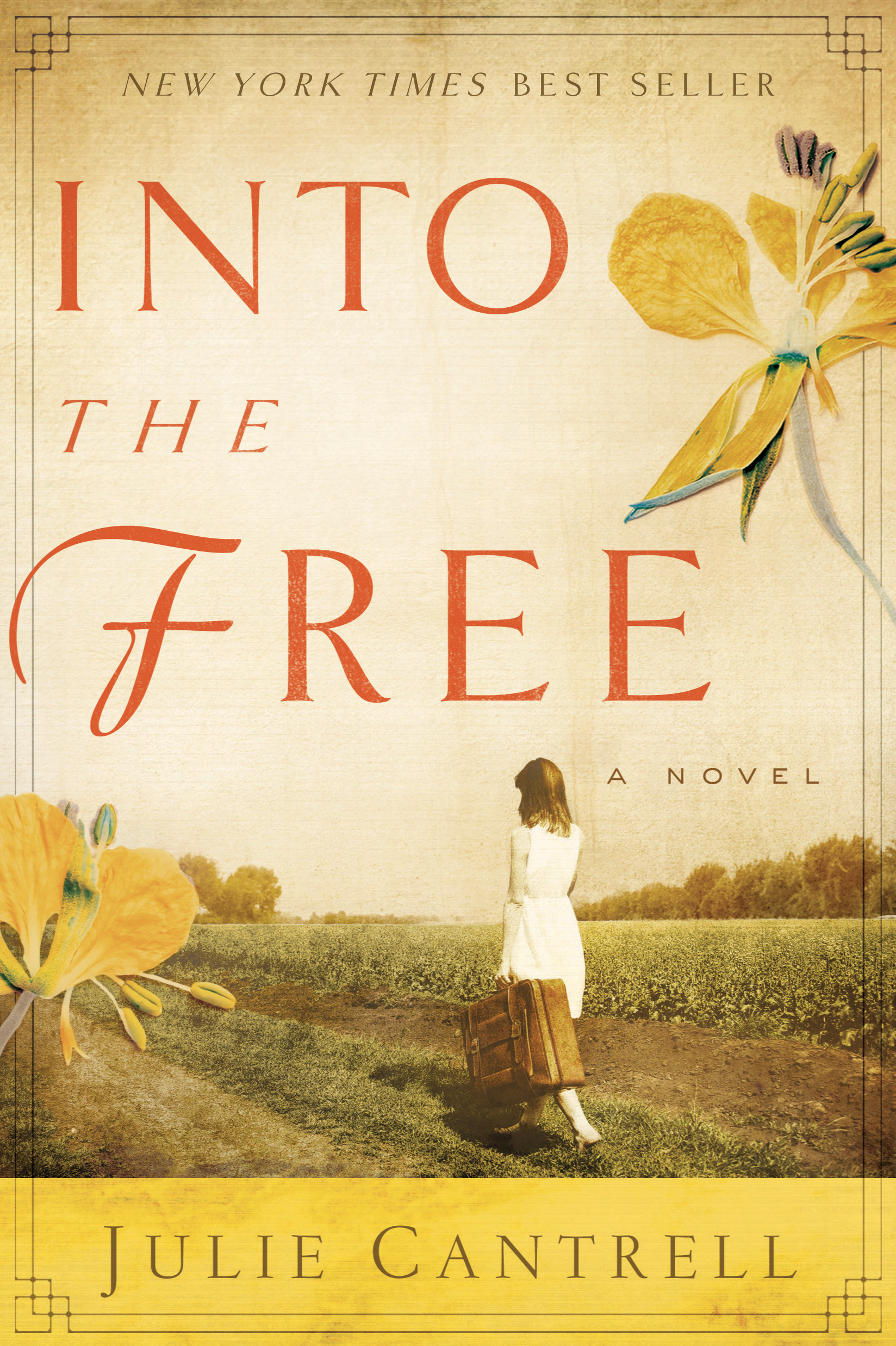 Into the Free: A Novel By: Julie Cantrell