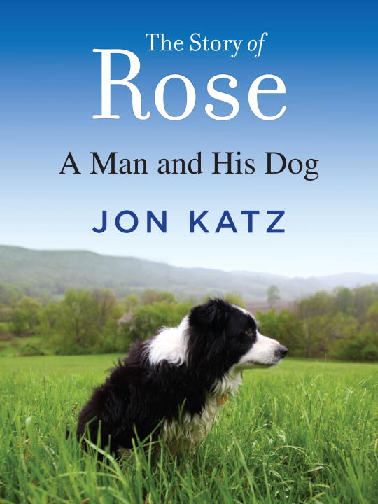 The Story of Rose By: Jon Katz