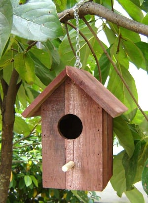 How To Build Bird Houses: A Guide For Beginners