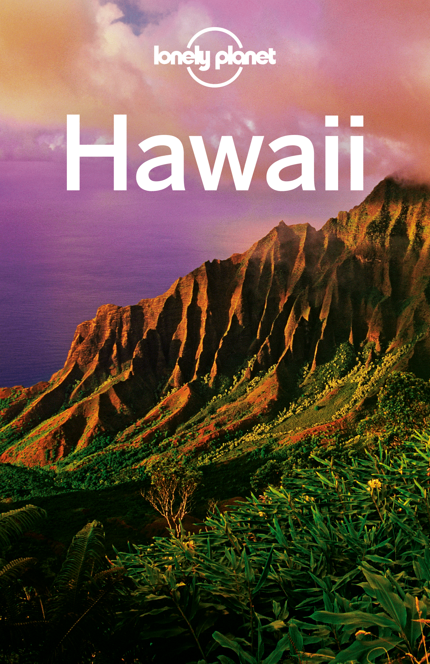 Lonely Planet Hawaii By: Amy C Balfour,Conner Gorry,E Clark Carroll,Glenda Bendure,Lonely Planet,Luci Yamamoto,Ned Friary,Ryan Ver Berkmoes,Sara Benson
