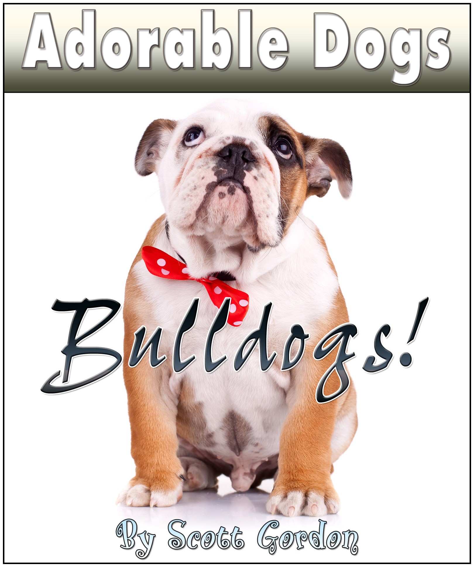 Adorable Dogs: Bulldogs!