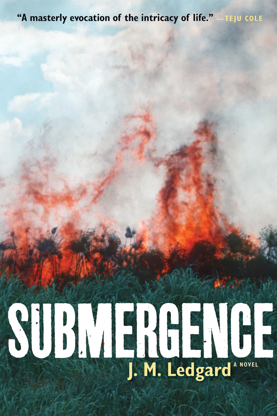 Submergence By: J. M. Ledgard