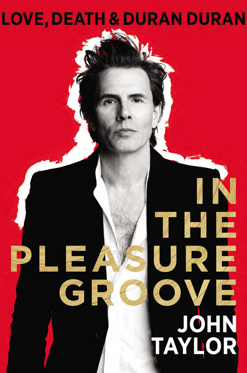 In the Pleasure Groove By: John Taylor