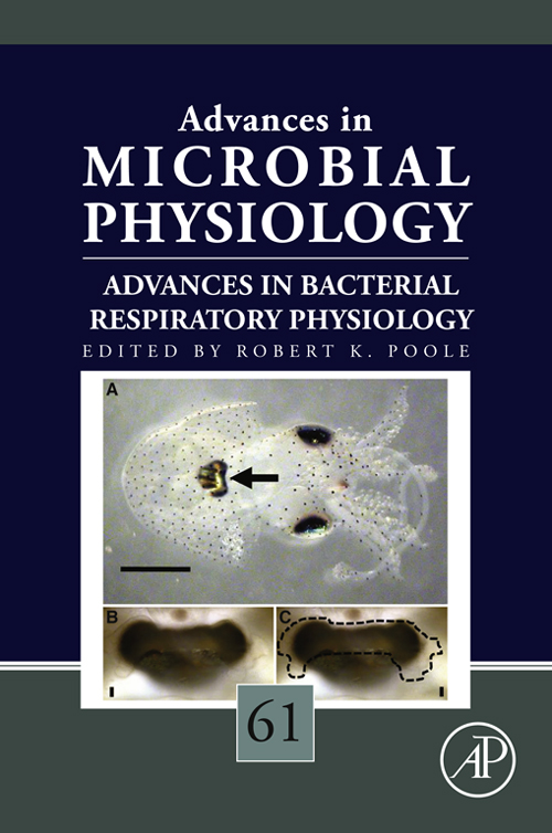 Advances in Bacterial Respiratory Physiology