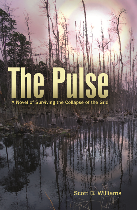 The Pulse By: Scott B. Williams