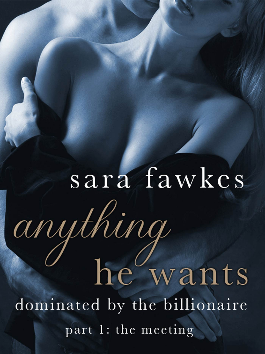 Anything He Wants: The Meeting (#1) By: Sara Fawkes