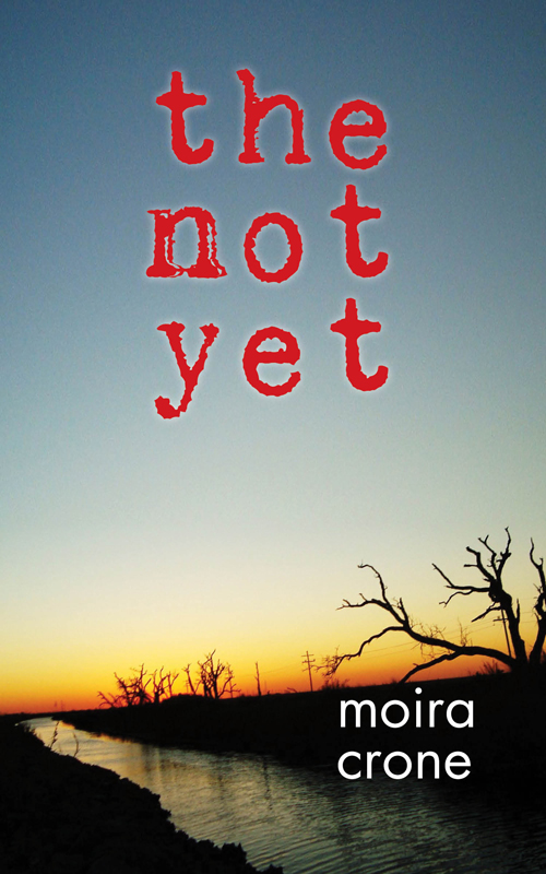 The Not Yet By: Moira Crone