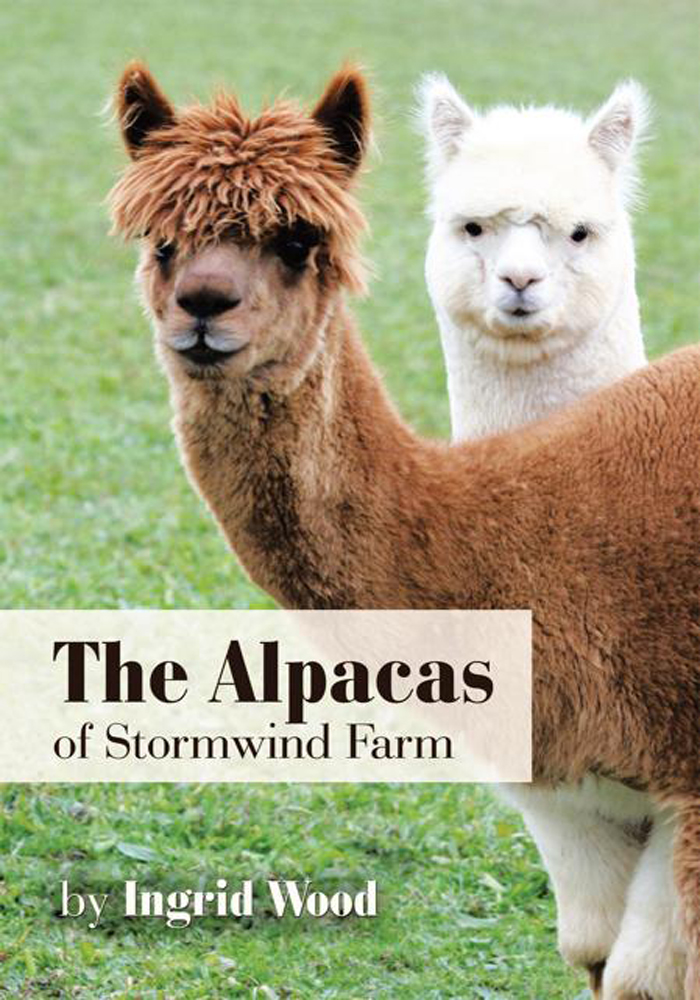 The Alpacas of Stormwind Farm