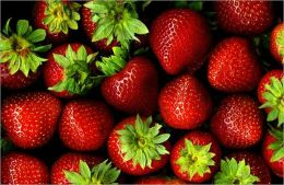 A Crash Course on How to Grow Strawberries By: Freda Cole