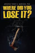 download Where Did You Lose It? book