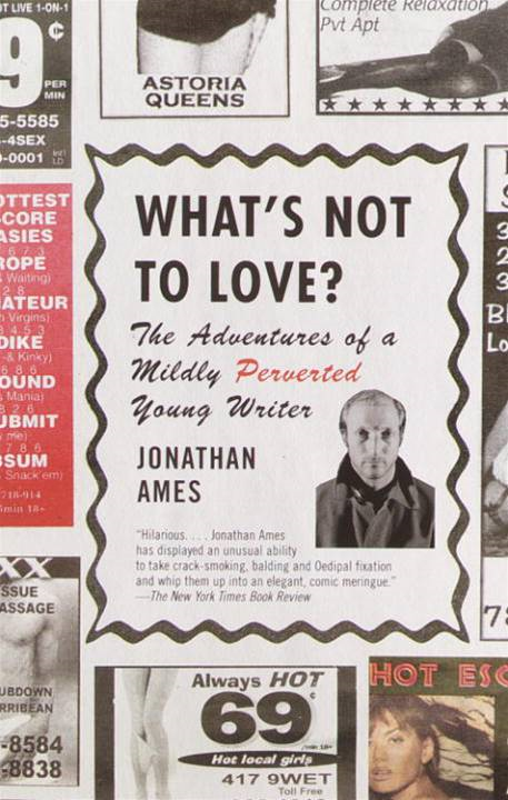 What's Not to Love? By: Jonathan Ames