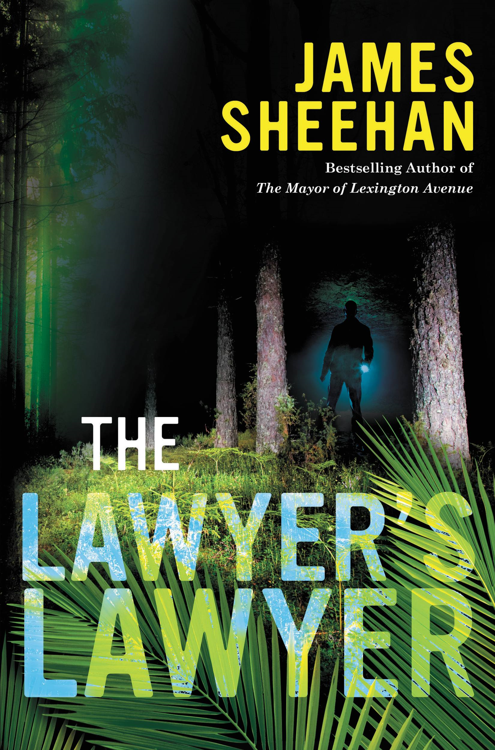 The Lawyer's Lawyer By: James Sheehan