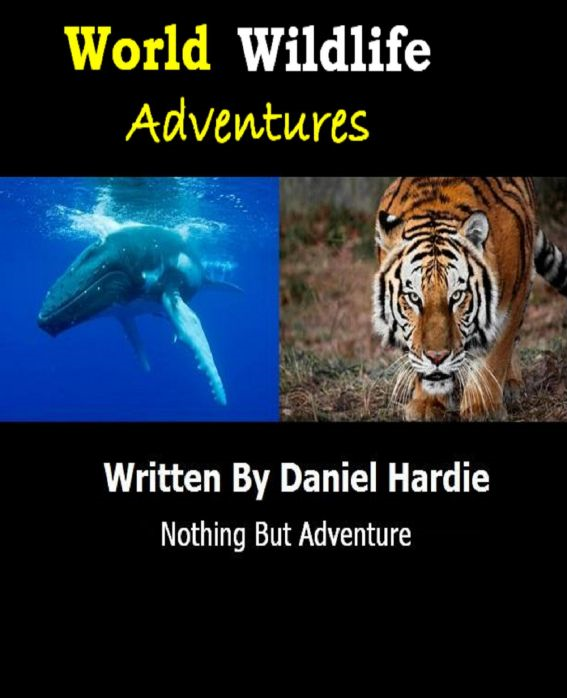 World Wildlife Adventures