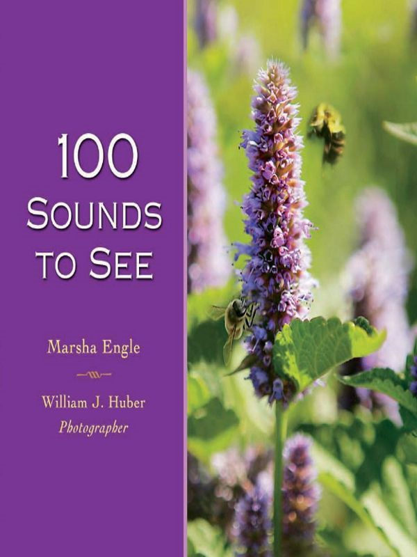 download 100 sounds to see