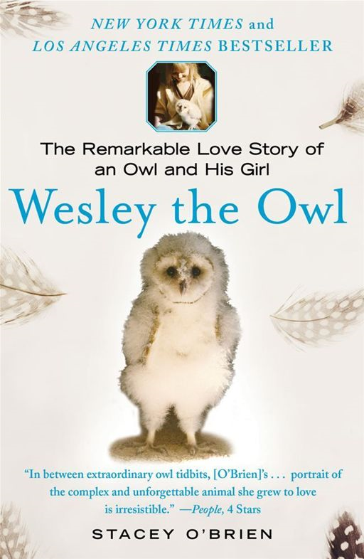 Wesley the Owl By: Stacey O'Brien