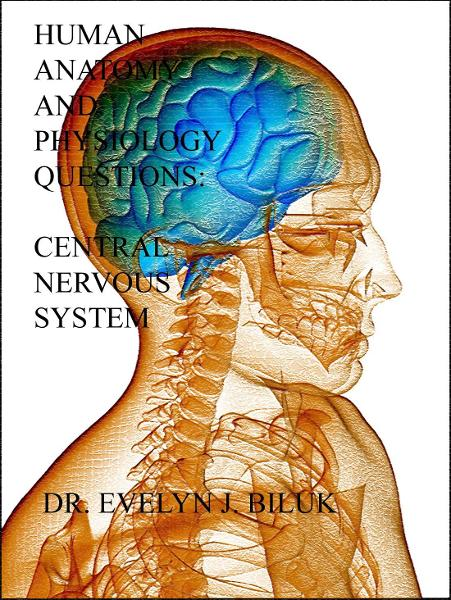 Human Anatomy and Physiology Practice Questions: Central Nervous System By: Dr. Evelyn J Biluk