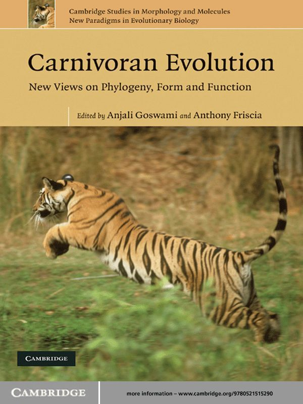 Carnivoran Evolution New Views on Phylogeny,  Form and Function
