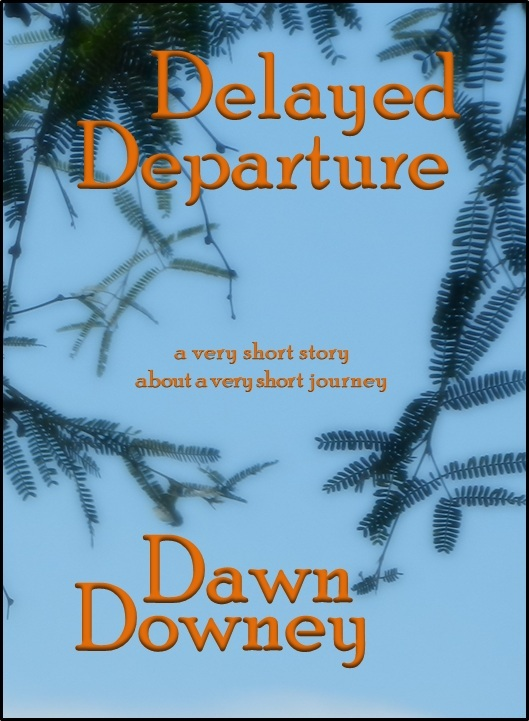 Delayed Departure: A Very Short Story About a Very Short Journey