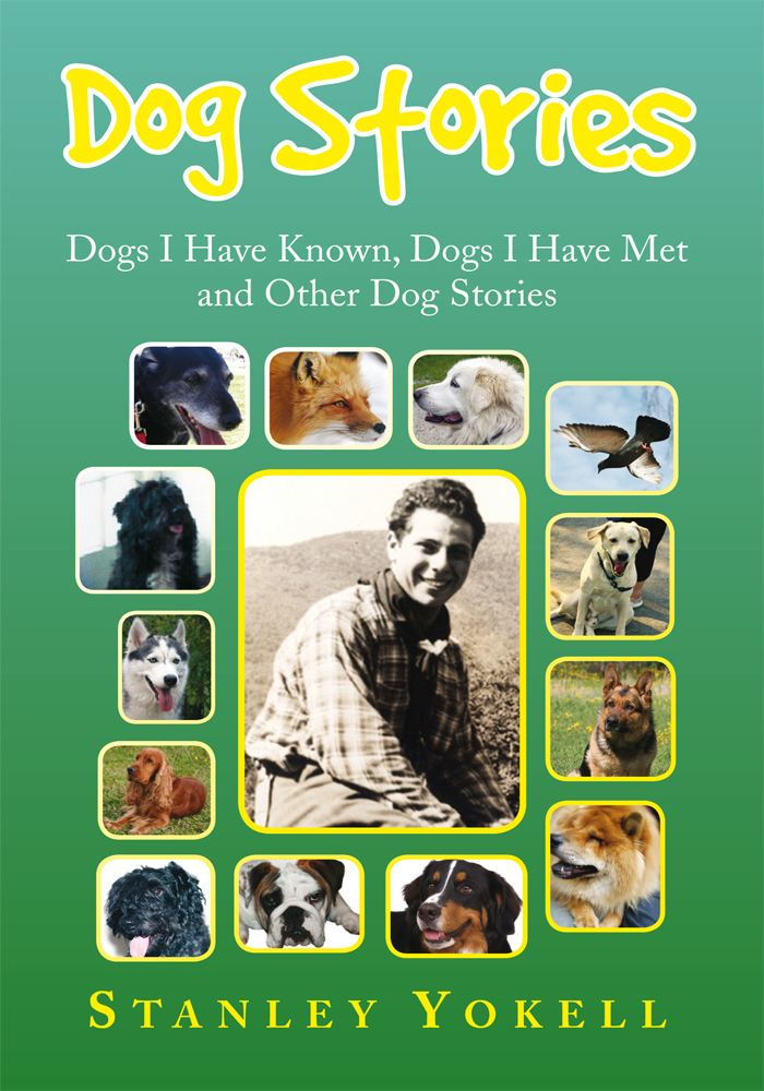 Dog Stories By: Stanley Yokell