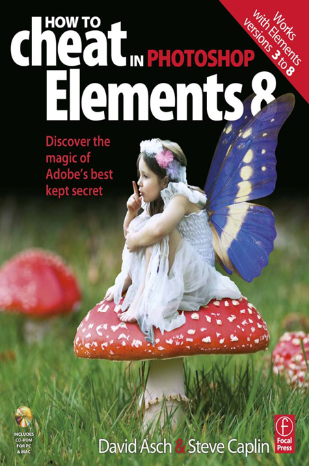 How to Cheat in Elements 8 Creative Photomontage on a budget