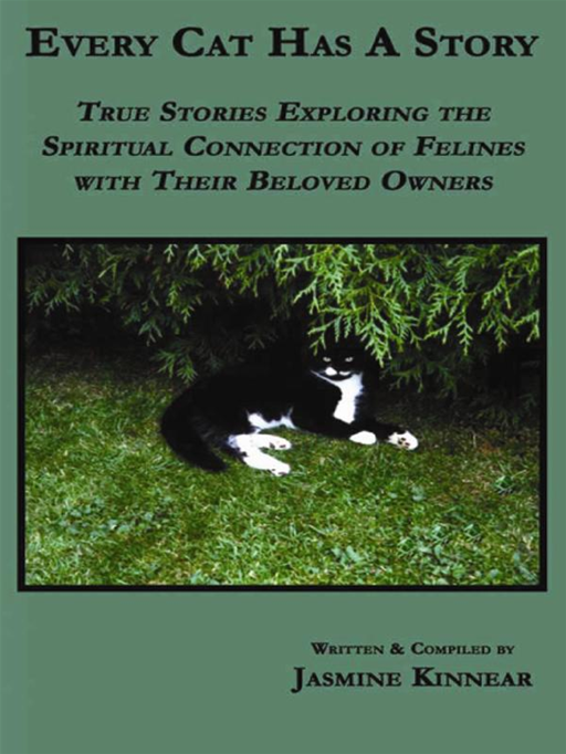 Every Cat Has A Story: True Stories Exploring The Spiritual Connection Of Felines With Their Beloved Owners