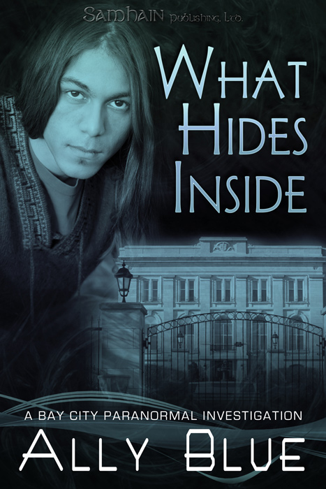 What Hides Inside By: Ally Blue