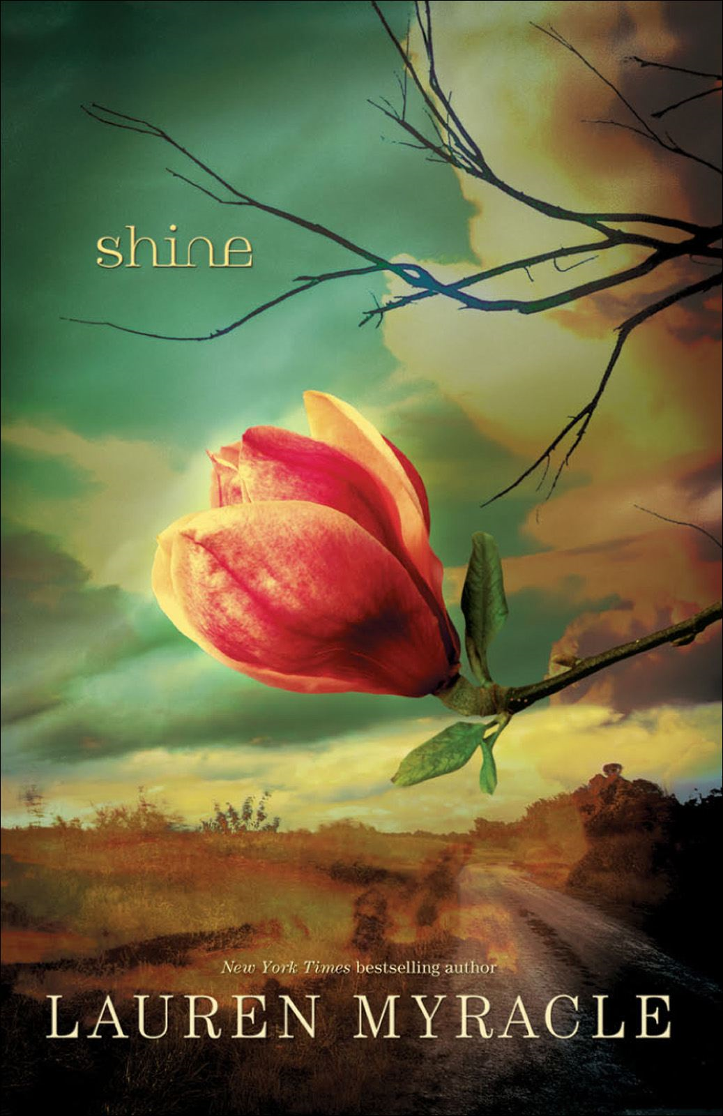 Shine By: Lauren Myracle