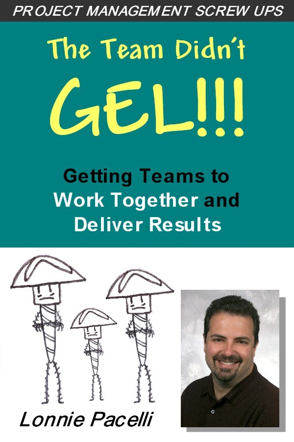 Lonnie Pacelli - The Team Didn't Gel: Getting Teams to Work Together and Deliver Results