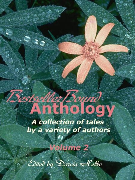 BestsellerBound Short Story Anthology Volume 2