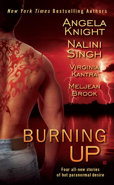 Burning Up By: Angela Knight,Nalini Singh