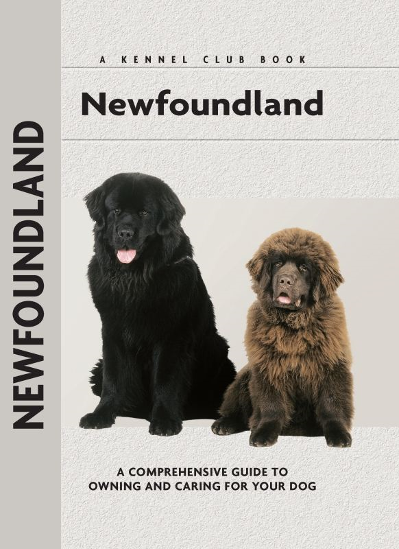 Newfoundland By: Angela Barlowe